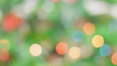 Colorful bokeh of Christmas lights tree. Pan Footage