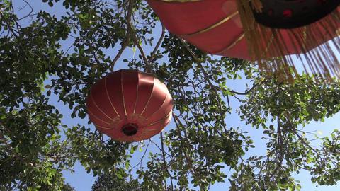 chinese lantern Live Action