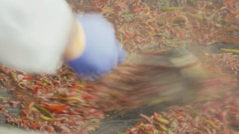 Metal scoop mixes asian food stewing on big pot Footage