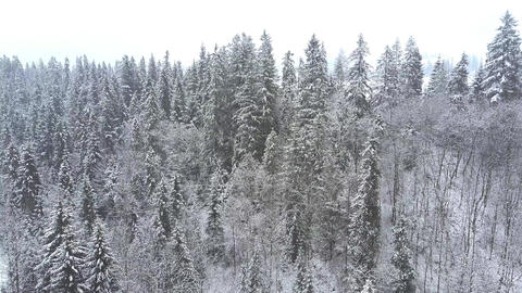 Long aerial clip of a snowy winter scenery in southern Poland, the Tatra Footage