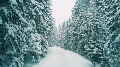 Low altitude aerial shot of a forest pathway in the snow Footage