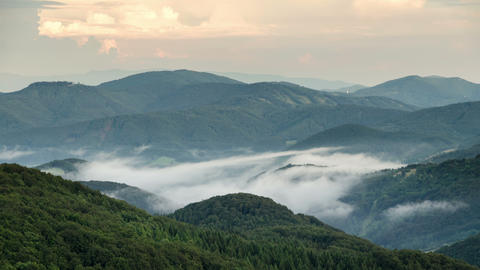 Misty evening above clouds moving in green forest valley time lapse Footage