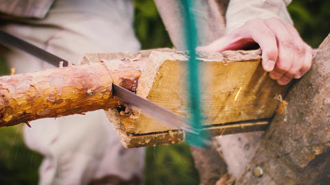 Man cuts wood in the forest Footage