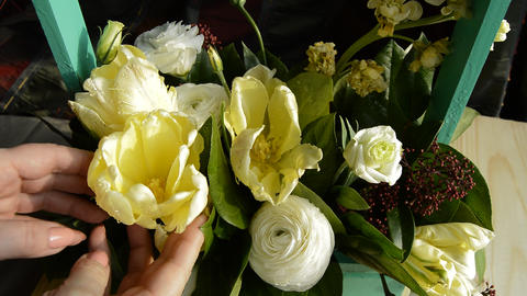 women's hands correct flowers in a bouquet ビデオ