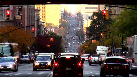 Street Canyon in Harlem New York City – MANHATTAN, NEW YORK/USA NOVEMBER 20, 2 Live Action