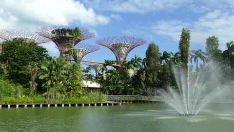 Fountain at Supertree Grove at Gardens by the Bay Footage
