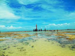 View of beach with lighthouse Photo