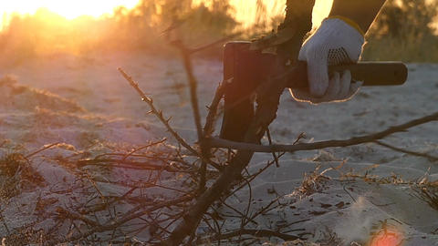 Axe cuts the twigs of a tree branch on seashore at sunset in slo-mo Footage