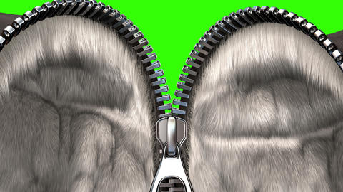 Unzipping a Zipper, Fur Coat Option Animation