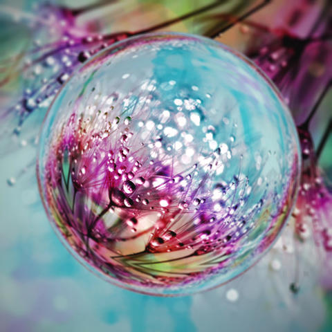 Colorful Flower Bubble CG動画素材
