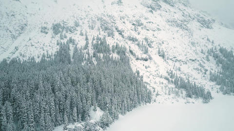 Aerial view of a highland forest in falling snow Footage