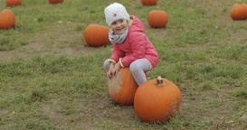 Playful child having fun in autumnal garden Footage
