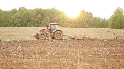 Tractor plowing field against the sun Footage
