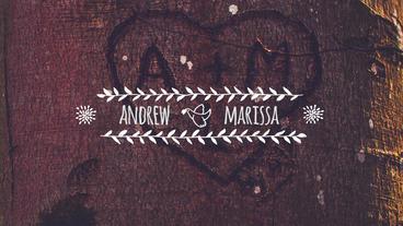 Wedding Titles & Transitions Premiere Proテンプレート