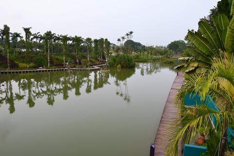 shot of beautiful scenery along Singapore Garden by the Bay Photo