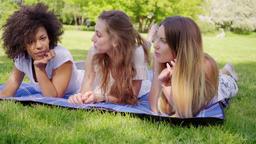 Beautiful women communicating on grass Footage