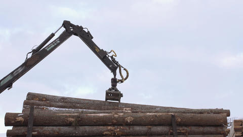 Crane claw loader unloads timber logs from heavy truck at sawmill facility Footage