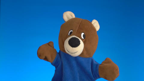 Cute glove puppet teddy bear Live Action