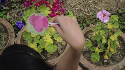 Top view,close and sliding shot of a girl study nature using magnifying glass ビデオ