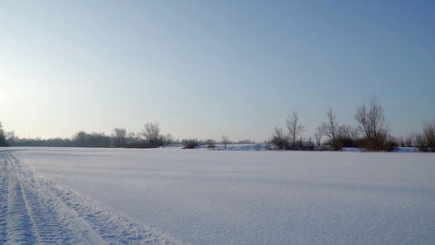 Snow-covered field, bushes and trees Footage