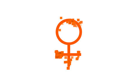 Female Sign from letters of different colors appears behind small squares. Then Animation