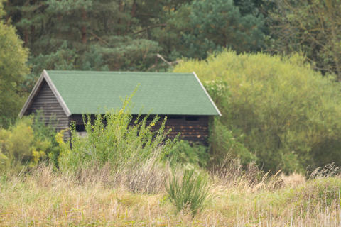 Small wooden hut in the middle of the wilderness Photo