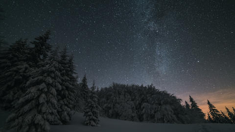 Christmas winter night landscape with stars sky moving over snowy trees. Footage