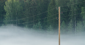 Time lapse of morning fog flowing between electric lines Footage