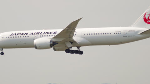 Japan Airlines Dreamliner Boeing 787 approaching Live Action