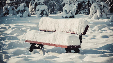 Fantastic Fairytale Magical Landscape View Bench Christmas Tree Footage