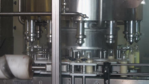 Packaging bottles line in the milk industry Live Action