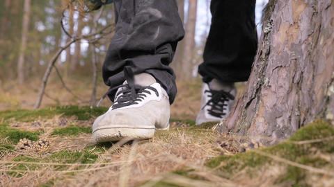 Person feet in sneakers and dirty pants walking on pine forest floor Footage