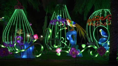 Dubai, UAE - January 13, 2018: glowing figures exotic… Stock Video Footage