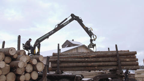 Mechanical claw loader unloads timber logs from heavy truck at sawmill facility Live Action