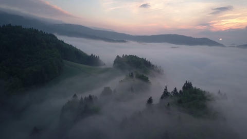 Aerial view of misty forest in morning sunrise Footage