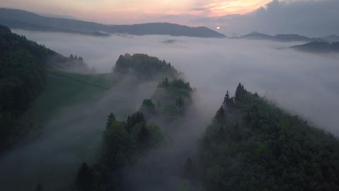 Flight over misty forest in morning sunrise Footage
