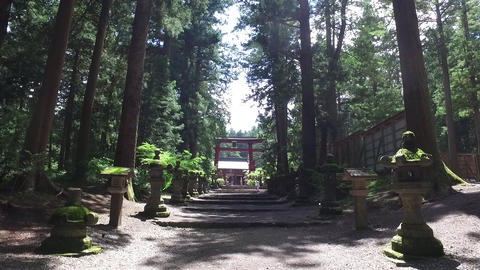 [JAPAN] FUJI SENGEN JINJA-Shrine Gate Grounds Live Action