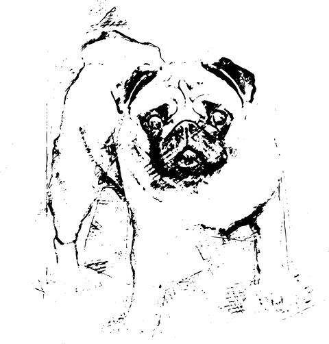 A beautiful pug stands in the meadow - Illustration Fotografía