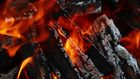 Burning wood fire flame spire in bonfire fireplace Footage