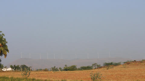 Indian fields and palm trees and number of wind turbines Footage