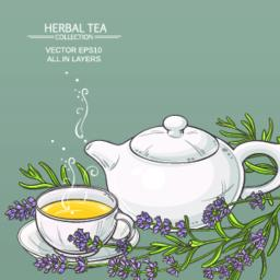 lavender tea background Vector