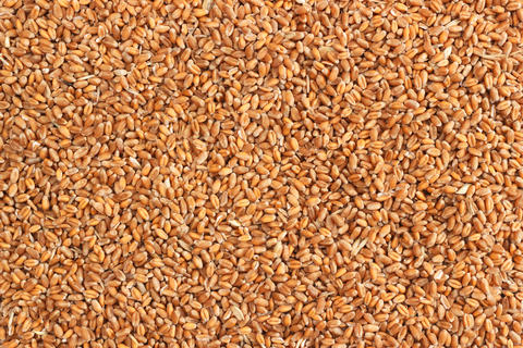Natural raw wheat seeds background Photo