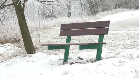 Bench in the snow in winter landscape. Foggy winter scene and green bench Footage