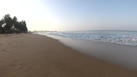Tropical Beach, Palm Beach stock footage