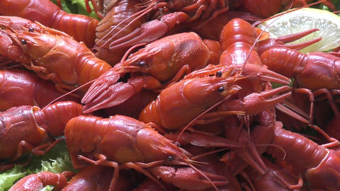 Boiled crayfish for dinner Footage