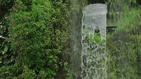 Wall of Flowers and Waterfall. Slow Motion Footage