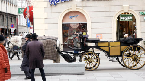 Traditional horses and carriage in Vienna, Austria Footage