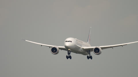 Japan Airlines Dreamliner Boeing 787 approaching Footage