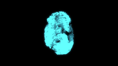 neutral status. pulsating finger print. Blue colour. seamless loop Footage