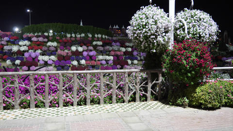 Dubai, UAE - January 18, 2018: artistic exposition multicolored flower bed with Footage